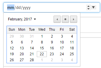 Date picker in widget not compatible with IE 10 or mozilla
